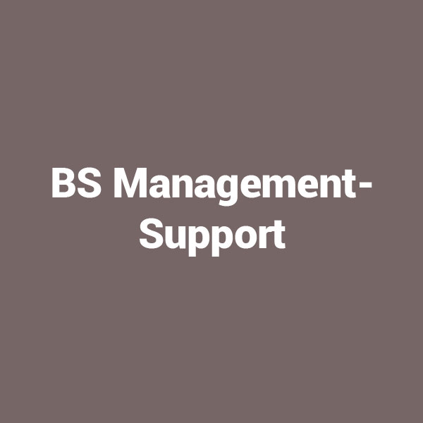 BS-Managementsupport